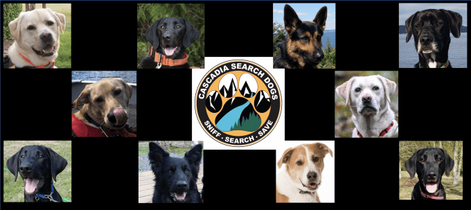 Cascade Search Dogs Banner
