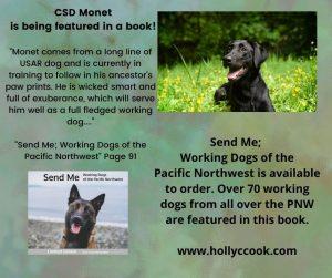 K9 Monet and description of the book Send Me.